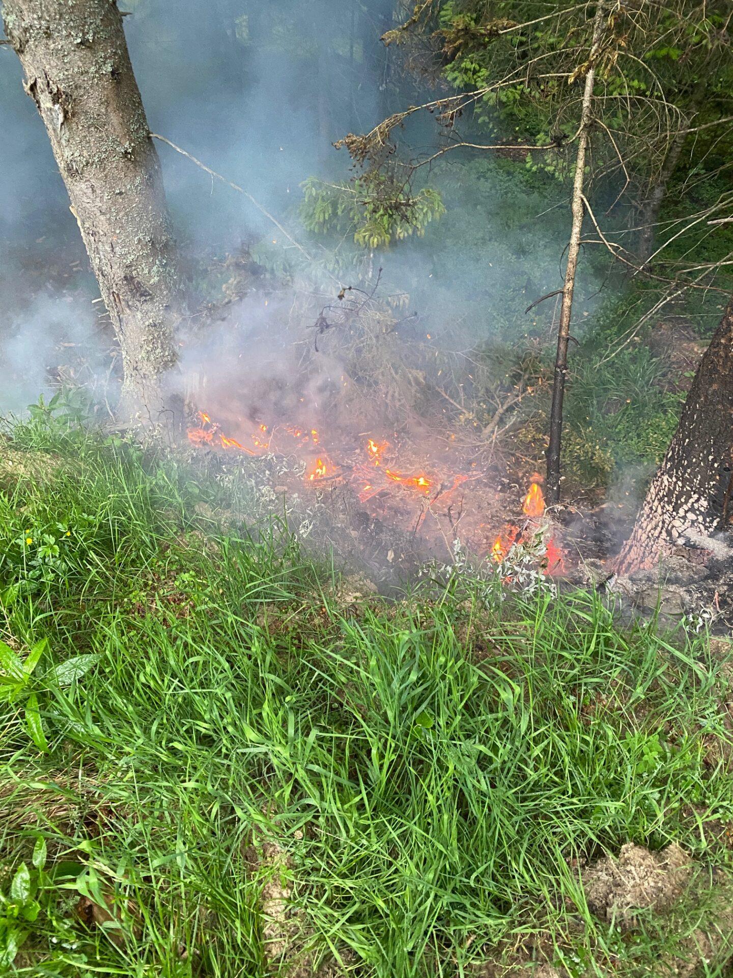 25.06.2021 – Waldbrand verhindert